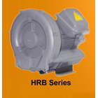 Ring Blower HRB Series 1