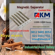Magnetic Grate