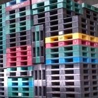 Beli Juan Pallet plastik bekas semua Ukuran 110x110x12cm 4