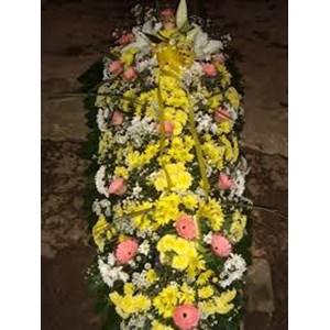 bunga peti