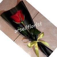 bunga mawar 1