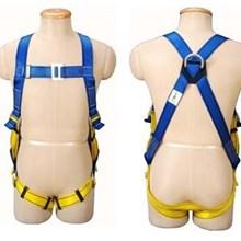 Protecta 1390010