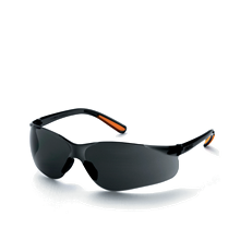 Safety Glasses Kings KY 2222