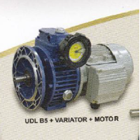 Electric Motor Yuema UDL B5