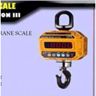 Crane Scale CAS Caston III 1