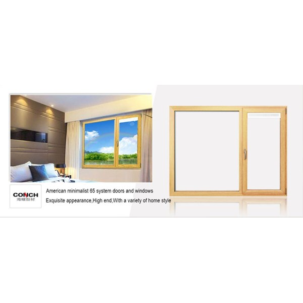 American Minimalist 65 system Door and Windows