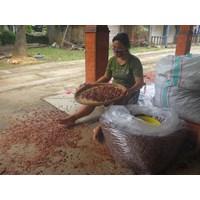 Biji Mahoni Kering Penampung Biji Mahoni Dengan Harga Terbaik Lokasi Purworejo Jawa Tengah  Murah 5
