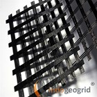 Geogrid Polyester 4