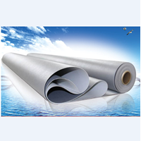 Jual Thermoplastic Polyolefin (TPO)