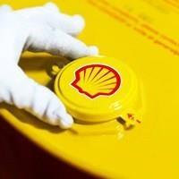 Distributor Oli Shell Argina T 40 3