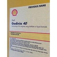 Distributor Oli Shell Gadinia 40 3
