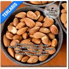 Kacang Almond - Raw Almond Whole 1