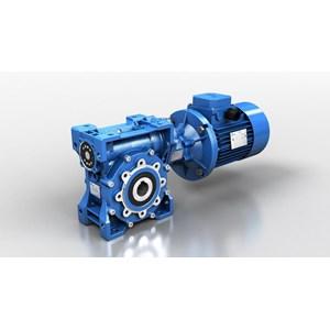 Worm Geared Motor Motovario
