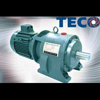 Beli Distributor Motor Induksi - Distributor Motor elektrik TECO  4