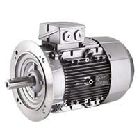 Motor Induksi SIEMENS - Agen Motor Siemens di Indonesia 1