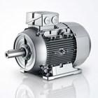 Motor Induksi SIEMENS - Jual Electric Motor Siemens  2