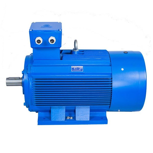 China Induction Motor - China Electric Motor Agent