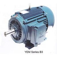 Motor Induksi YUEMA - Distributor Motor Elektrik YUEMA