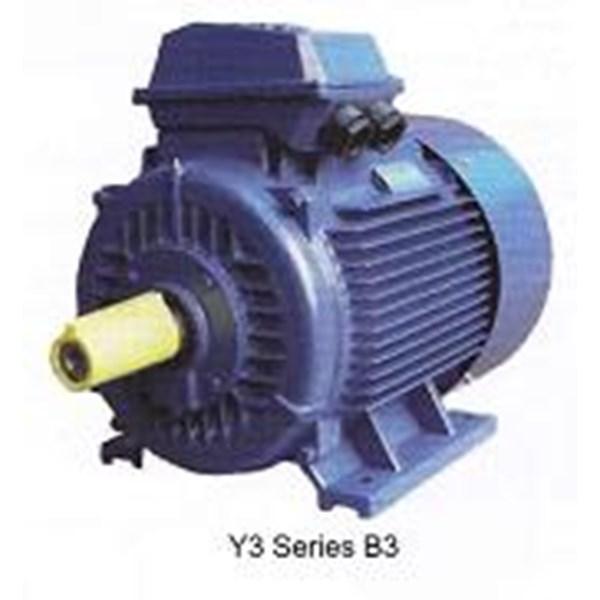Selling YUEMA Induction Motor - YUEMA Electric Motor Agent