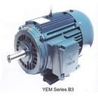 Motor Induksi YUEMA - Distributor Electric Motor YUEMA 1
