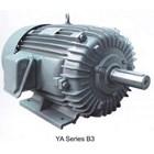 Motor Induksi YUEMA - Distributor Electric Motor YUEMA 2