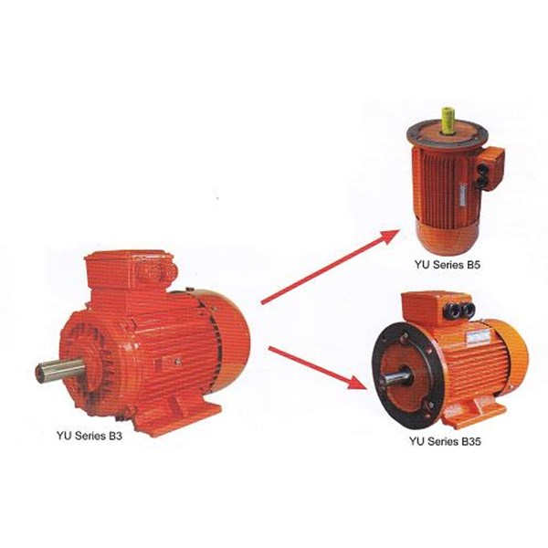 Jual Motor Induksi YUEMA - Jual Electric Motor YUEMA