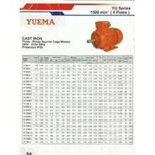 Jual Motor Induksi YUEMA - Harga Electric Motor YU