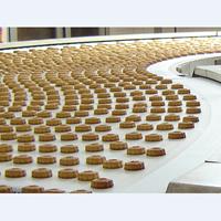Conveyor Belt Untuk Industri Makanan 1