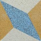 Encaustic Terrazzo Tiles ENTZ011 Lantai Teraso 1