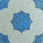 Encaustic Terrazzo Tiles ENTZ020 1