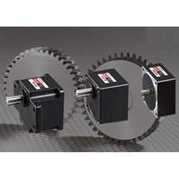 Jual Luyang Small gear motor 2