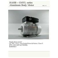 Jual Single phase motor - HAHB 2
