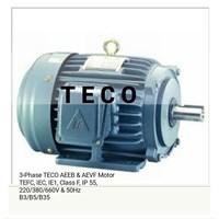 TECO Fukuta Liming AC Standard Motors
