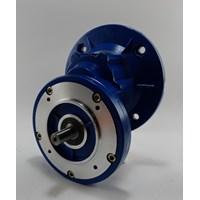 Helical Gear Motor  1