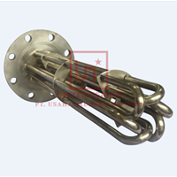 Six Element Immersion Heater 1