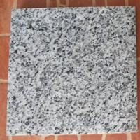 Granit Putih Bintik Hitam Granit Bianco Sardo Granit Putih China 1