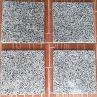 Jual Granit Putih Bintik Hitam Granit Bianco Sardo Granit Putih China 2