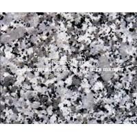 Beli Granit Putih Bintik Hitam Bianco Perla Granit Alam China 4