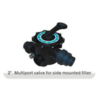 Multiport Valve For Side Mounted Filter 2