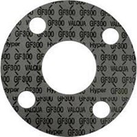 Packing Gasket (Packing Gasket Flange)