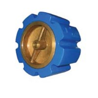 Silent Check Valve Cast Iron Wafer Type CSCV-WB