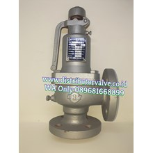 Safety Valve CI 10K FLG LEVER 317