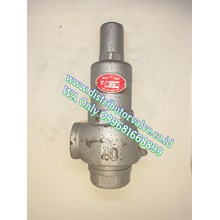 Safety Valve C/I 10K TL