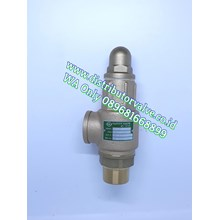 Safety Valve Drat SS 304 or DISC BRONZE  317