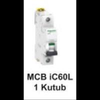 MCB  iC60L  1kutub      1A  A9F94101