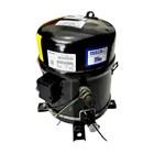 Compressor Bristol H2NG244DPEF ( 20PK ) 2