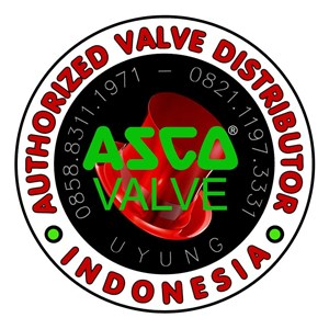 Asco Authorized Valve Distributor