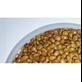 Kacangan Calopogonium Caeruleum (CC)