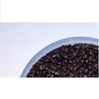 Kacangan Cover Crop Centrosema Pubescen (CP) 1