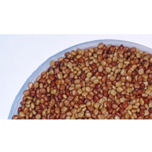 Kacangan Cover Crop Calopogonium Mucunoides (CM)